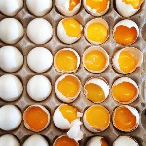 θρεπτικά στοιχεία του αυγού