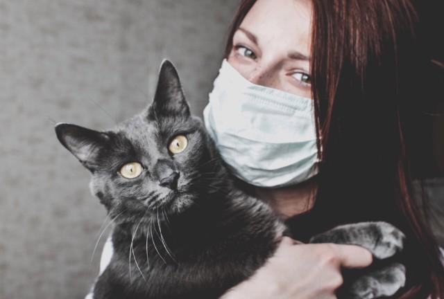αλλεργία κατοικίδια γυναίκα με γάτα φορώντας μάσκα