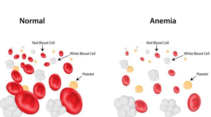 Φυσιολογικές και μη φυσιολογικές τιμές αίματος
