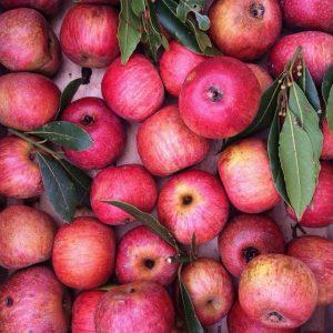 ουρική αρθρίτιδα κόκκινα μήλα