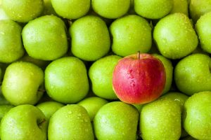 βότανα τροφές ενέργεια πράσινα και κόκκινα μήλα