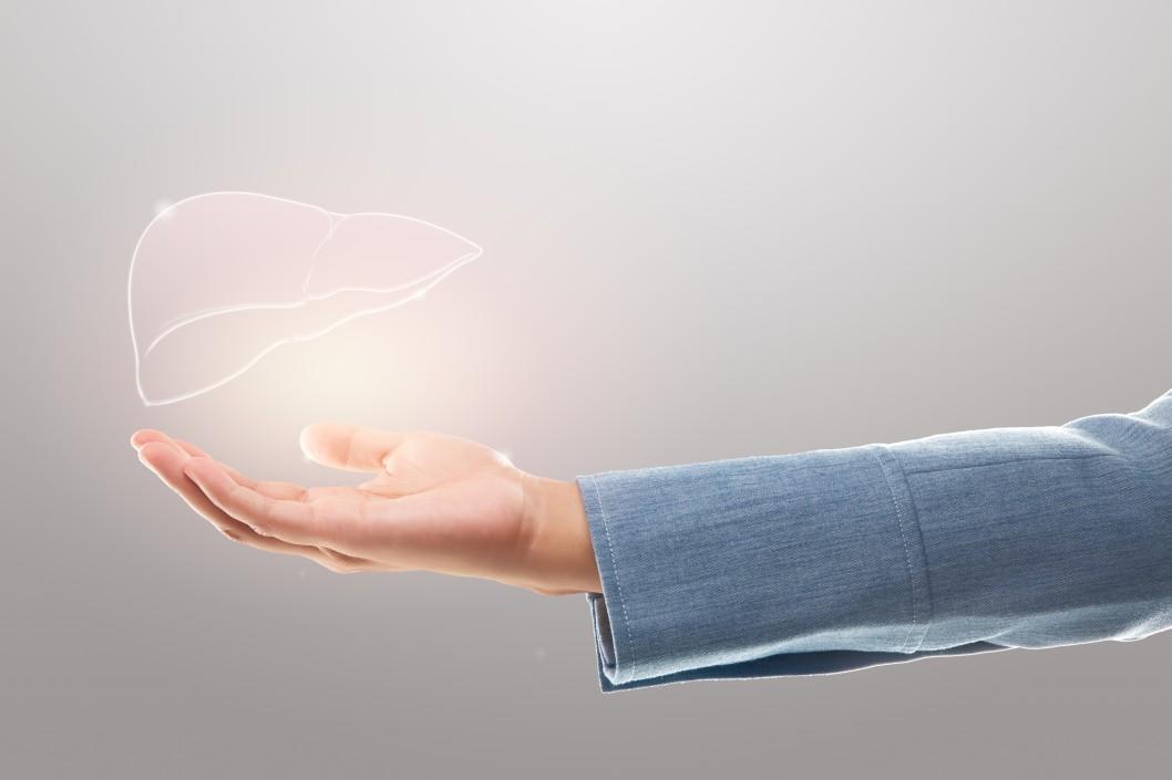 Ανθρώπινο χέρι κρατάει διάφανοσυκώτι