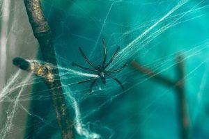 εφιάλτες αράχνη με ιστό