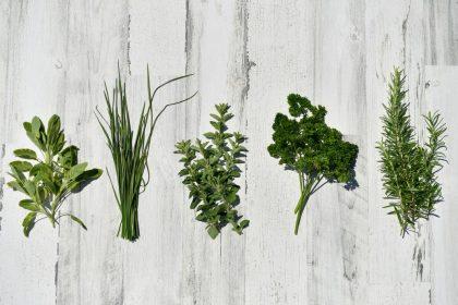 Δερματίτιδα: Θεραπεία με βότανα και άλλες φυσικές μεθόδους