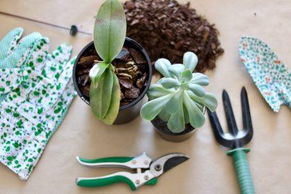 ηλικιωμένος σε lockdown κάνει κηπουρική για να αντιμετωπίσει την μοναξιά