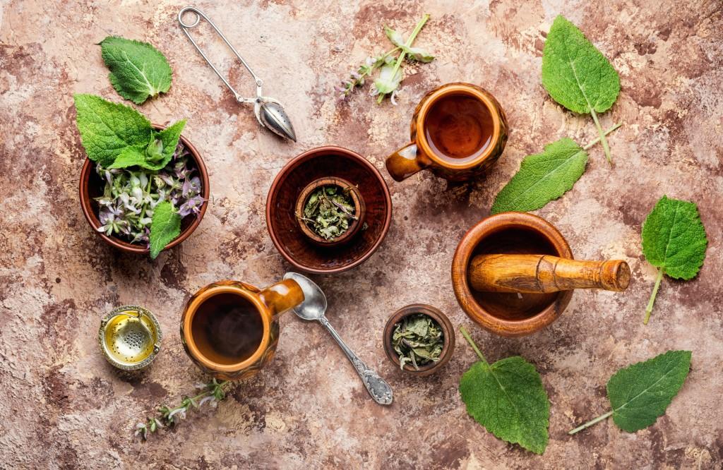 βότανα για θεραπεία της ΧΑΠ