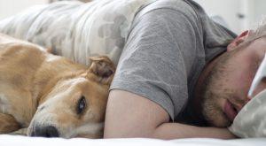 άνδρας και σκύλος κοιμούνται