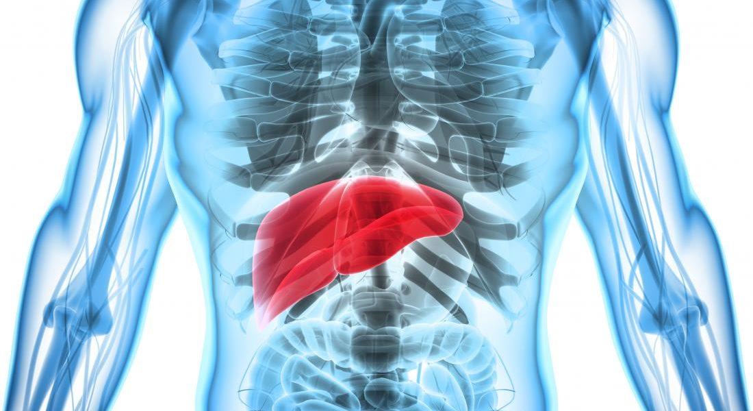 Εχινόκοκκος κύστη στον πνεύμονα