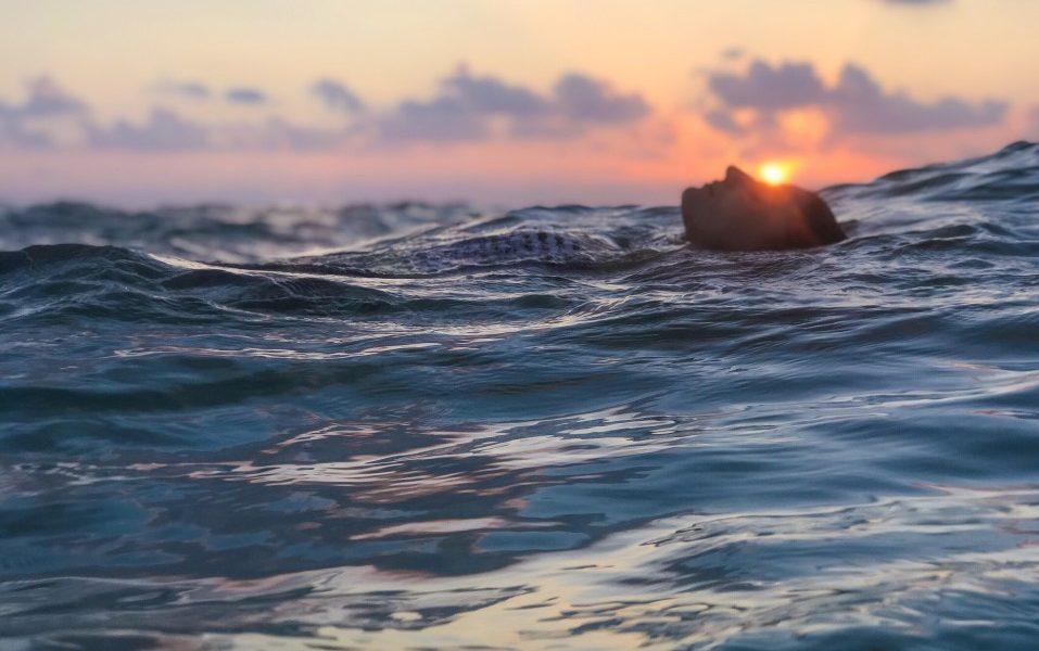 ψύχωση άνδρας μέσα στην θάλασσα στο ηλιοβασίλεμα