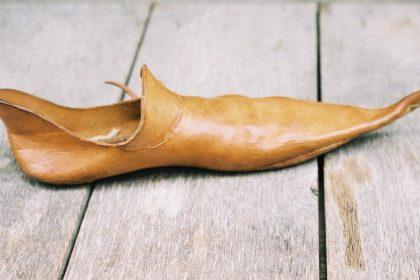 κότσι στο πόδι - παπούτσι