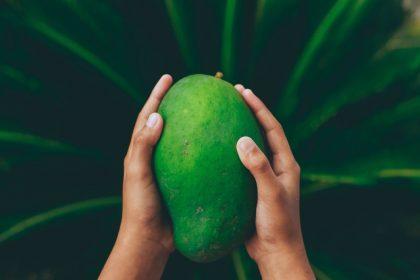 Μάνγκο – Τα οφέλη του… υπερήρωα των φρούτων