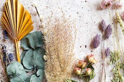 βότανα για θρόμβωση μπαχαρικά για θρόμβωση