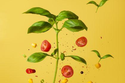 ταξινόμηση τροφίμων